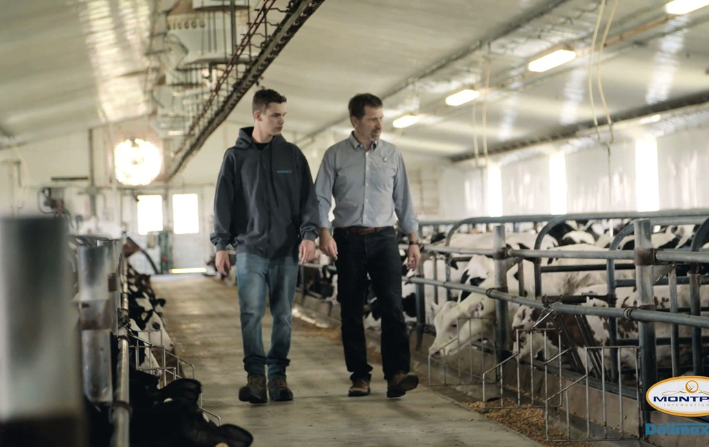 Farms - Catelli Brothers Hero Image